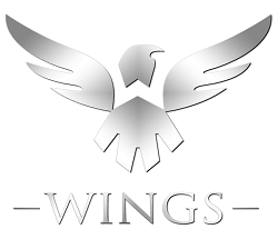 team wings gaming logo