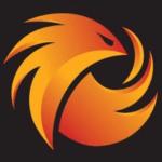 team phoenix 1