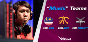 Mushi Teams