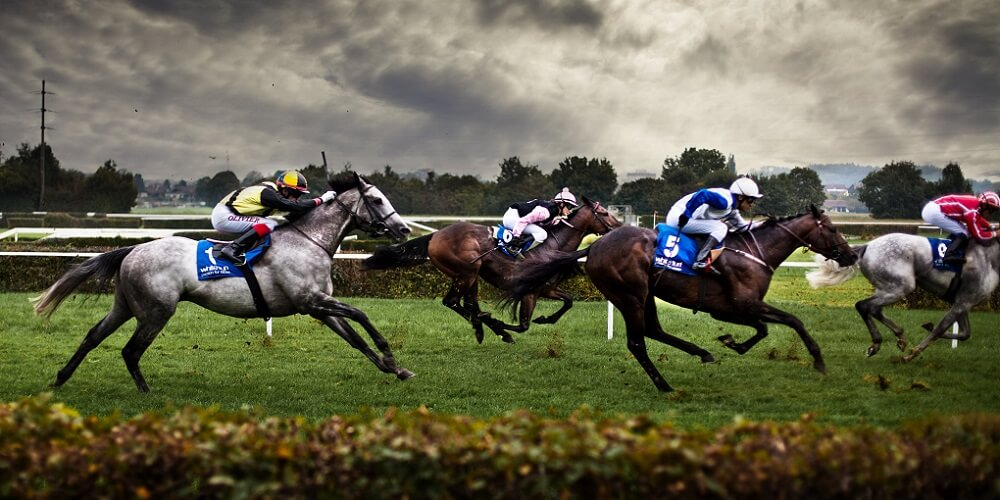 Best Horse Racing Promotions 2018